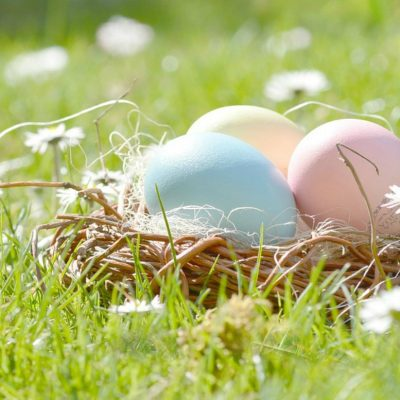 Easter: 5 Easy Tips to Make this year a Green & Eco-friendly Easter