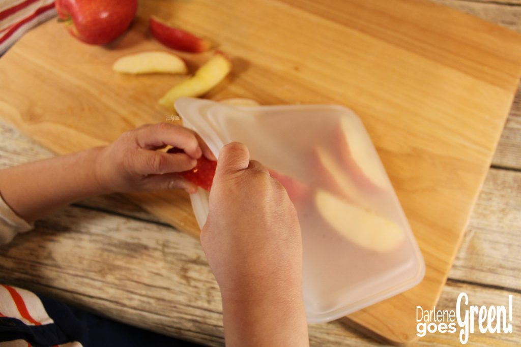 Product Review: Stasher Bag. Eco-friendly Reusable Sandwich Bags