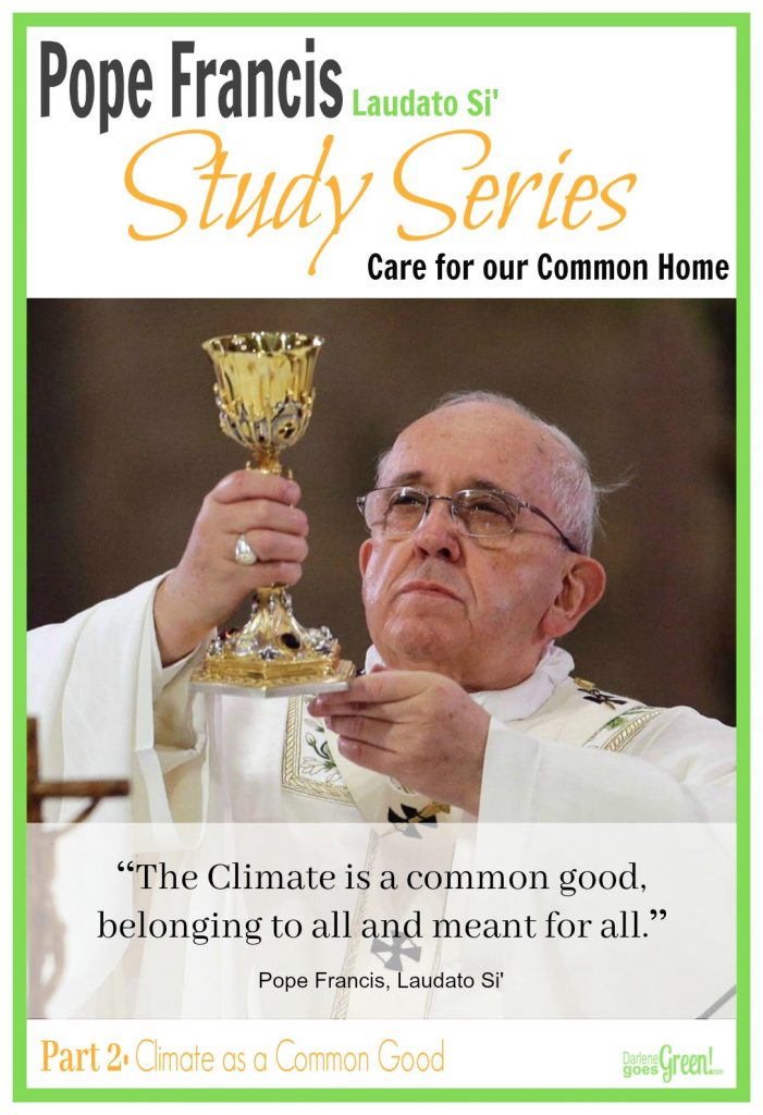 Understanding Pope Francis Environment Laudato Si' Part 2
