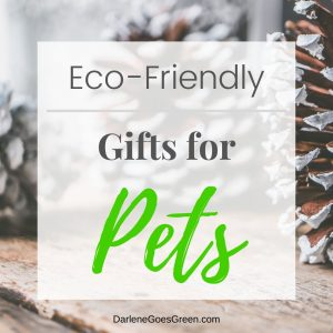 Looking for Eco-friendly Gifts for Pets? I share my favorites (with quick links!) here https://darlenegoesgreen.com/the-ultimate-green-eco-friendly-gift-guide/