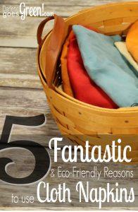 Eco-Friendly Cloth Napkins