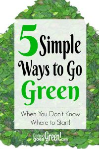 5 Simple Ways to Go Green