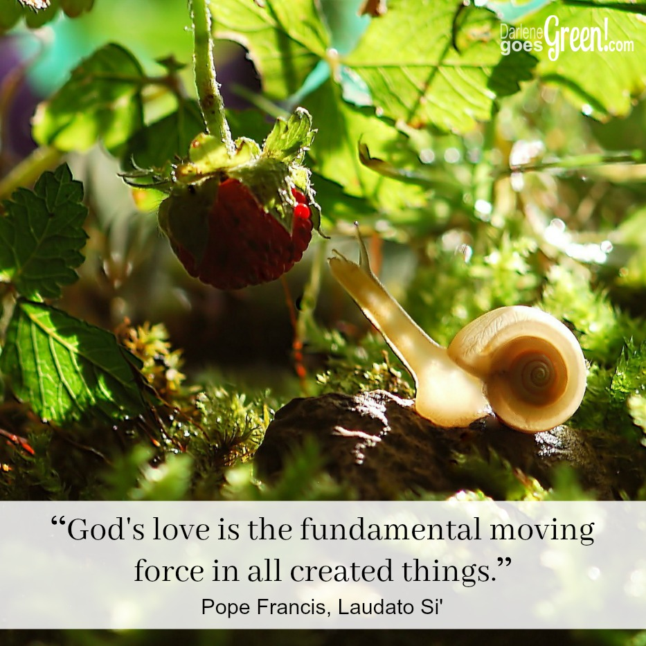 God's Love is the fundamental moving force in all living things