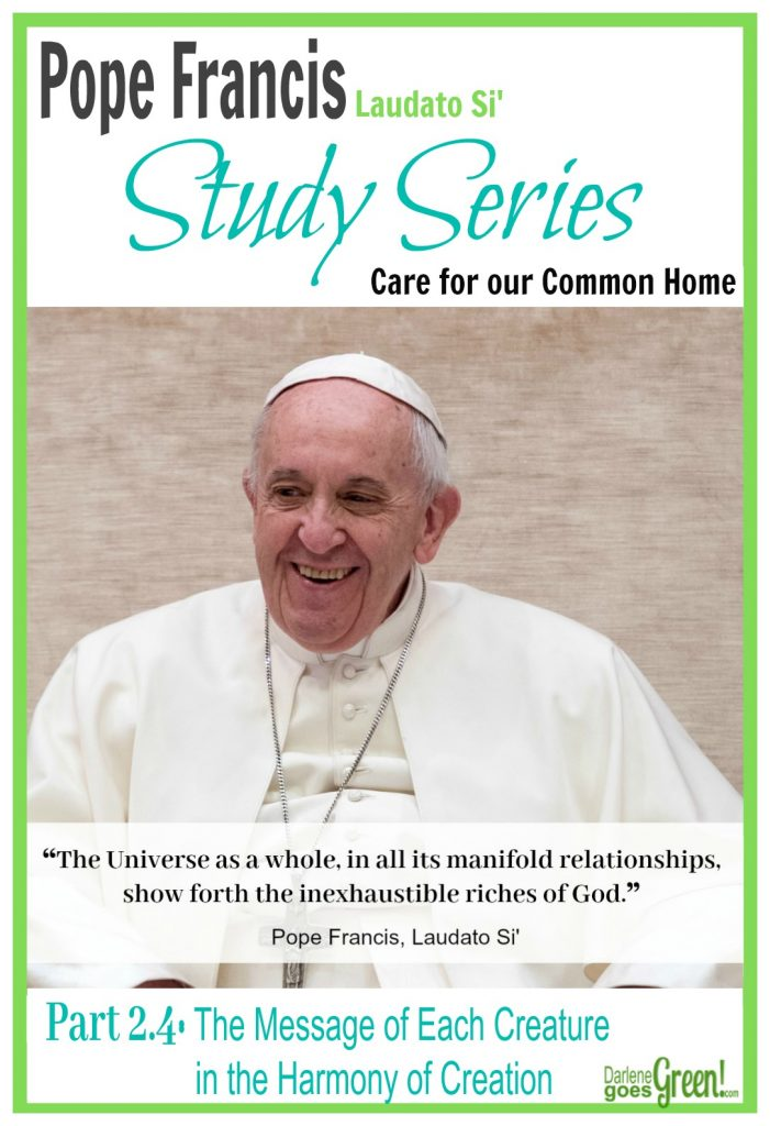 On Care for our Common Home Pope Francis
