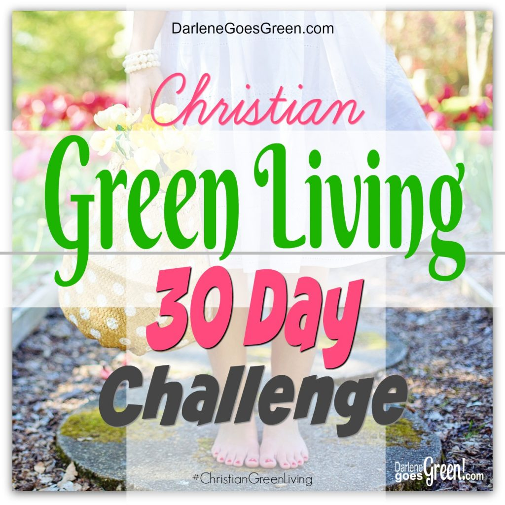 Earth Day Green Living Challenge