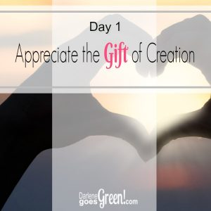 Appreciate the Gift of Creation Go Green