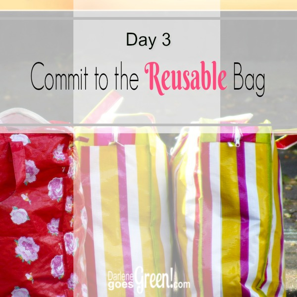 Go Green Commit to the Reusable Grocery Bag