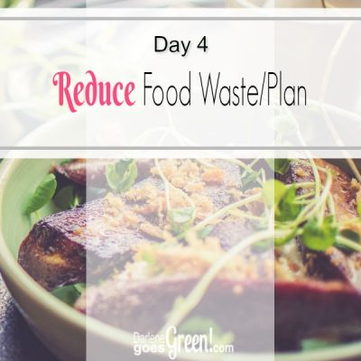 30 Day Challenge Day 4: Reduce Food Waste/Plan