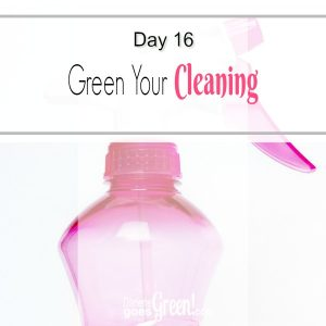go green with natural and eco-friendly cleaning
