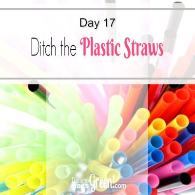 Christian Green Living Challenge Day 17 Ditch the Plastic Straws