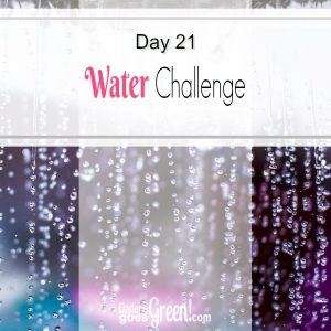 Christian Green Living Challenge Day 21 Water Challenge