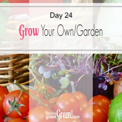 30 Day Challenge Day 24: Grow Your Own Garden