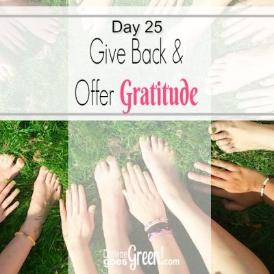 30 Day Challenge Day 25: Give Back & Offer Gratitude