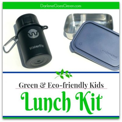 What's in Your Eco-friendly Lunch Box?