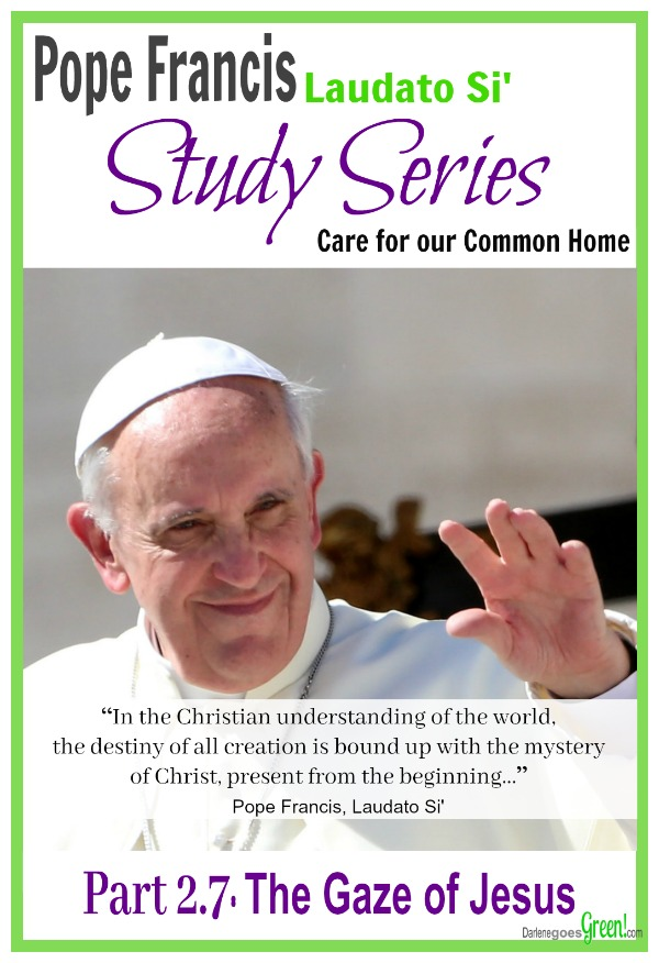 Understanding Pope Francis Chapter 2 The Gaze of Jesus